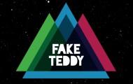 Fake Teddy